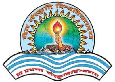 DSVV logo_20
